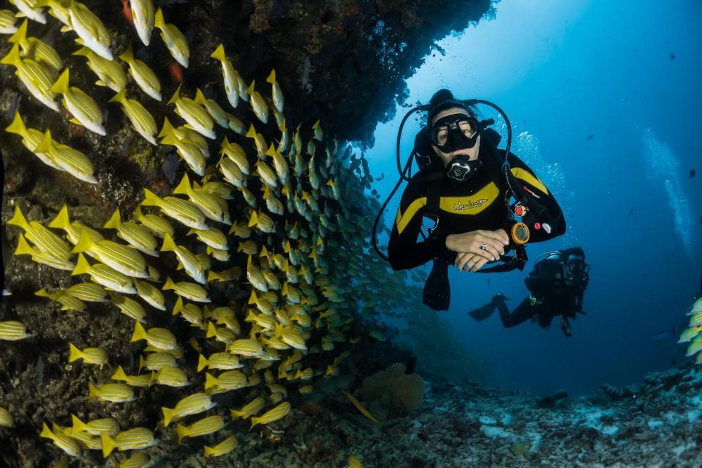 Ekwipunek do nurkowania - co jest potrzebne?