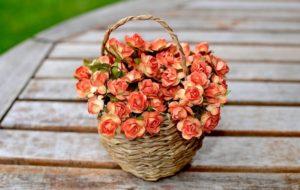 Jak pozbyć się kurzu ze sztucznych kwiatów?